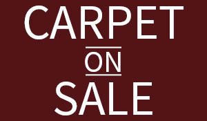Carpet On Sale! Visit our showroom for the hottest trends in flooring!
